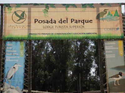 Taller práctico de producción y realización audiovisual sobre patrimonio natural para jóvenes impartido por Trasfoco Escuela Audiovisual Itinerante en Viña del Mar (Chile)