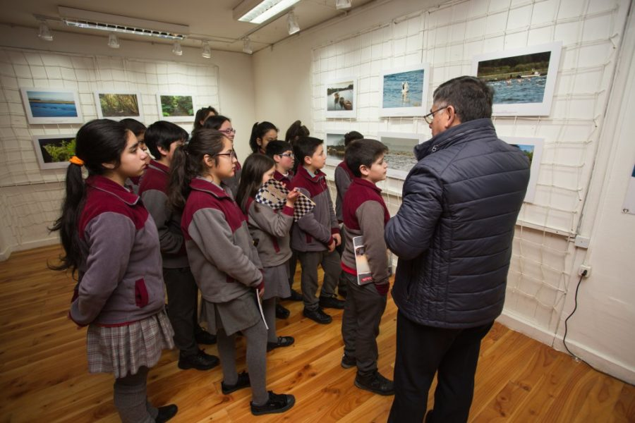 Exposición_Ancud-64