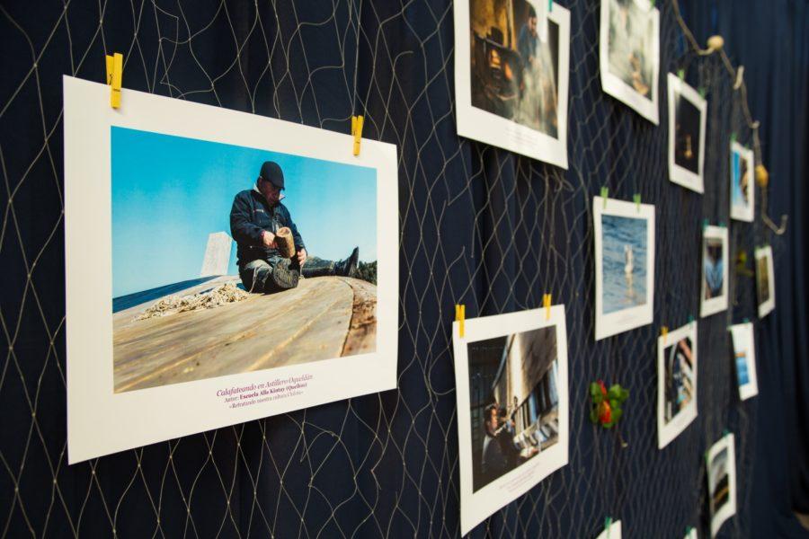 Exposición_Apiao-11