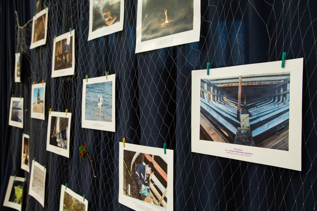 Exposición_Apiao-9