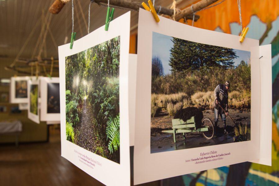 Exposición_Cucao-26