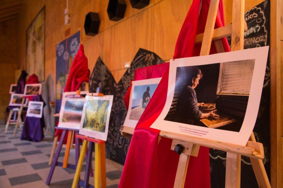 Exposición_Quilquico-8