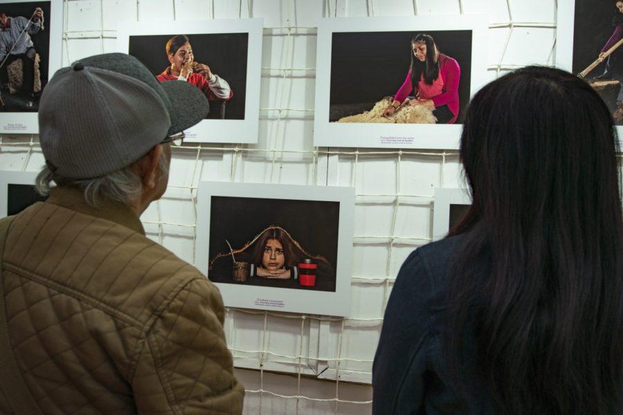 Inauguración exposición_Casa de la Cultura de Ancud-14