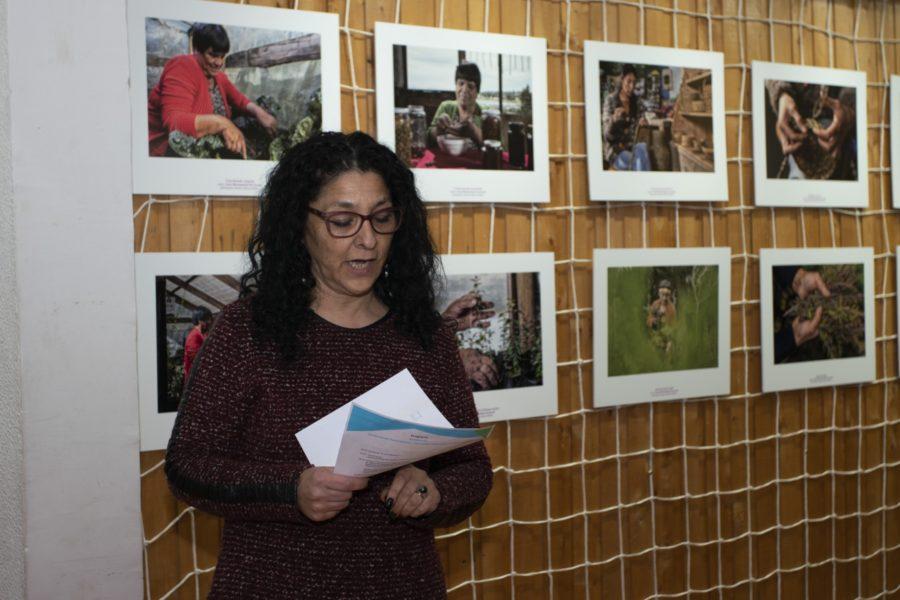 Inauguración exposición_Casa de la Cultura de Ancud-15