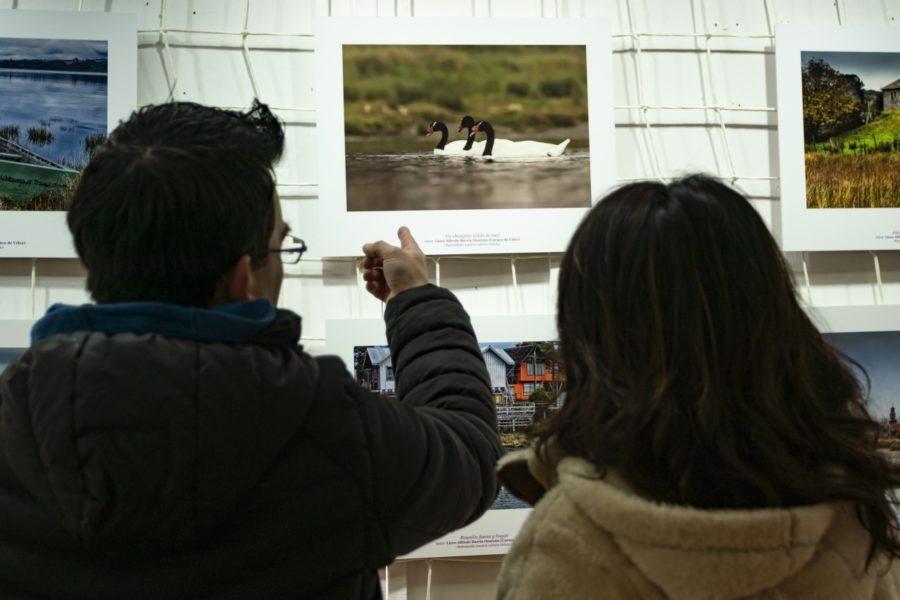 Inauguración exposición_Casa de la Cultura de Ancud-9
