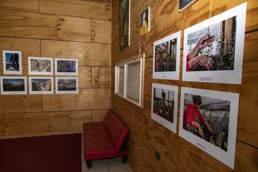 Inauguración exposición_Centro Cultural Quellón-57